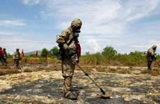 Elargissement de l'échelle de décontamination de la dioxine au district d'A Luoi