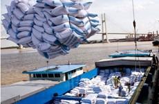 Les Etats-Unis optimiste quant aux exportations vietnamiennes de riz