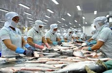 La filière poisson tra vise 2 milliards de dollars d'exportations en 2018