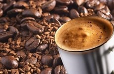 Les exportations de café rapportent 1,3 milliard de dollars en quatre mois