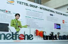 Les investissements vietnamiens à l'étranger s'accélèrent