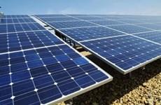 Energie solaire : Ninh Thuan remet la licence d'investissement à neuf projets