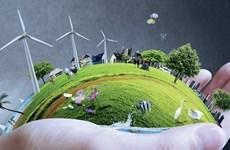 Le Vietnam partage ses expériences en matière de développement de l'agriculture verte