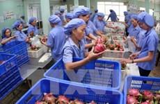 Pour renforcer les exportations de produits agricoles vietnamiens en R. de Corée