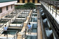 Hanoï : 52 % de la population des zones rurales a accès à l'eau propre