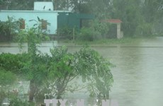 La tempête Son Tinh s'est affaiblie en dépression tropicale