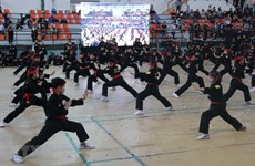 Ouverture de deux festivals d'arts martiaux traditionnels à Ho Chi Minh-Ville