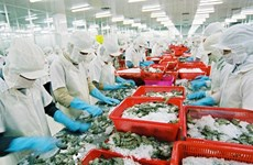 Aquaculture: l'objectif de 10 milliards d'USD d'exportation en 2018 sera difficile à atteindre