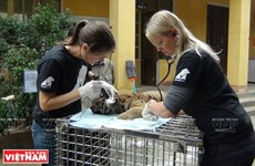 Protection des animaux sauvages au Vietnam