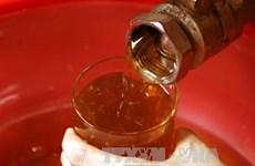 Le Vietnam classé au 2e rang des pays asiatiques exportateurs de miel
