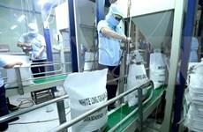 L'Égypte importera 1 million de tonnes de riz vietnamien