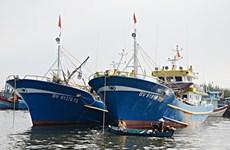 Ba Ria-Vung Tau renforce la sensibilisation sur la lutte contre la pêche INN