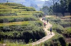 Lao Cai : Plus de 3.100 coureurs au marathon des montagnes du Vietnam 2018