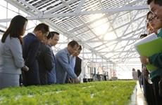 FLC prévoit de verser 1,5 milliard de dollars dans l'agriculture