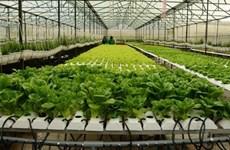 Accélération de l'application de la révolution industrielle 4.0 dans l'agriculture