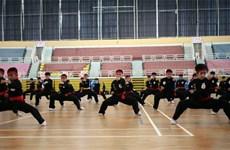 Ouverture des premiers Championnats du monde d'arts martiaux traditionnels vietnamiens