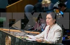 Le Vietnam affirme ses engagements envers le Programme de développement durable