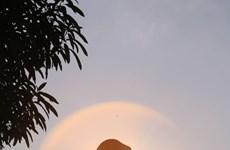 Les plus belles photos du Canon PhotoMarathon à Hanoi