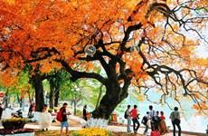 Hanoi et Ho Chi Minh-Ville, deux destinations à prix raisonnable