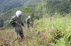 Golden West soutient le règlement des conséquences des bombes et mines