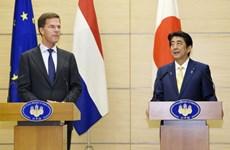 Le Japon et les Pays-Bas s'inquiètent des tensions en Mer Orientale