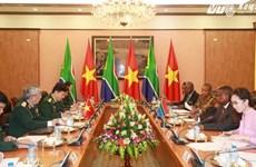 Dialogue de politique dans la défense Vietnam-Afrique du Sud de 2015