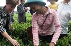 Assistance canadienne de plus de 18 millions de dollars pour les agriculteurs vietnamiens