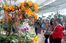 Clôture des 6e Floralies de Da Lat