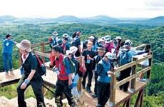 Efforts pour réduire le nombre de travailleurs vietnamiens illégaux en R. de Corée