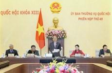 Le Comité permanent de l'AN adopte le statut des activités extérieures des organes de l'AN