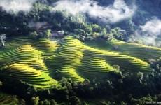 Hoang Su Phi se prépare à la 2e Semaine culturelle et touristique des rizières en terrasses 2016