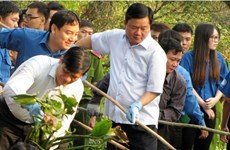 """La 114e édition du programme """"Dimanche vert"""" à Hô Chi Minh-Ville"""