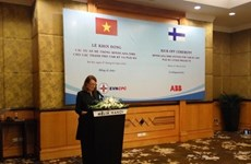 La Finlande aide le Vietnam à améliorer les réseaux de distribution électrique du Centre