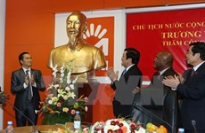 Des activités du président Truong Tan Sang au Mozambique