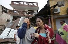 Le Vietnam solidaire avec l'Equateur endeuillé après un séisme dévastateur