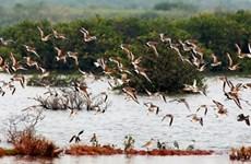 Des solutions pour mieux protéger les parcs nationaux et réserves naturelles
