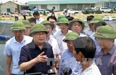 Un vice-PM demande de faire la lumière sur l'hécatombe de poissons