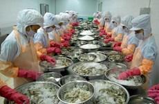 Hausse des exportations de crevettes aux Etats-Unis