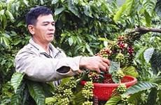 Gia Lai vise une réduction rapide et durable de son taux de pauvreté