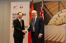 Projet de construction du pont de l'amitié Vietnam-Nouvelle-Zélande à HCM-Ville