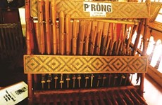 L'orgue en bamboo de Lê Thai Son