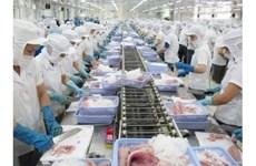 Poissons-chats: 57 producteurs vietnamiens s'assurent des normes d'export aux Etats-Unis