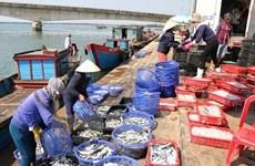 L'assistance opportune aux personnes touchées par l'hécatombe de poissons