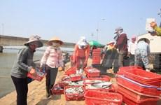 Hécatombe de poissons : poursuite du soutien des pêcheurs