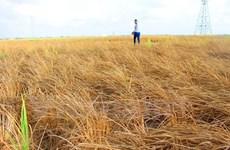 ActionAid Vietnam soutient le développement de la province de Soc Trang