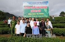 Le leader du PCV recommande à Lai Chau de moderniser son agriculture