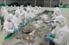 Crevettes: le Vietnam et les États-Unis signent un accord antidumping