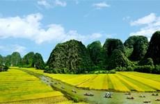 """La bande-annonce officielle de """"Kong : Skull Island"""" révèle des paysages imposants du Vietnam"""