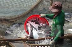 Les infrastructures des zones pangasicoles sont appréciées par le WWF
