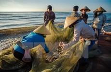 Les indemnités pour les pêcheurs seront versées dans plus d'un mois
